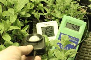 light meter grow room lumens