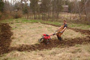 erik biksa building organic garden